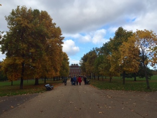 kensington-and-hyde-park